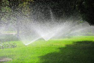 water sprinkler repair Trilby