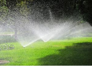 Lawn sprinkler repairs Carrollwood