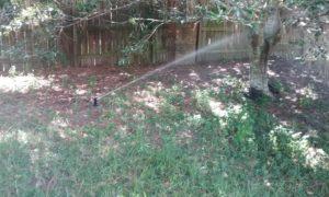 Lawn Sprinkler Repair Riverview